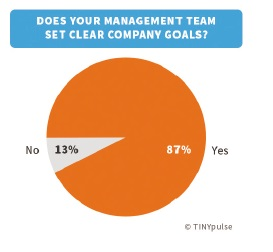 Does your management team set clear company goals