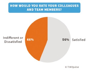 How would you rate your colleagues and team members