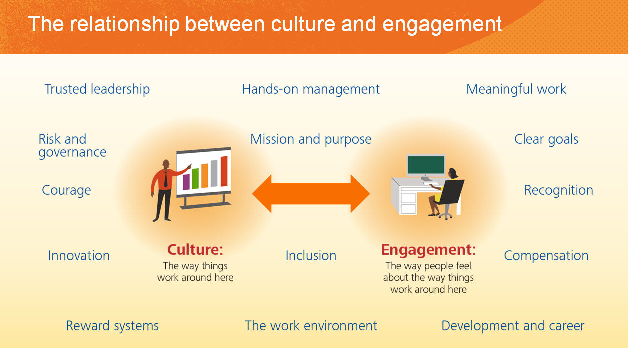 figure 7 the relationship between culture and management